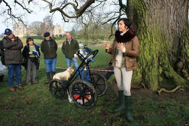 Sharon Hosegood root radar scanning at Burghley cropped for web